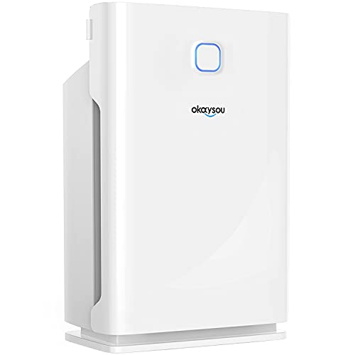 Okaysou Smart Air Purifier with Washable 3 Filters, Medical Grade H13 True HEPA, 5-in-1 Large Room Cleaner for Pets, Asthma, Smokers, Remove 99.97% Dust Pollen Smoke Odor,1000 Sq Ft, White