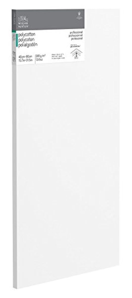 Winsor & Newton 6206023?Cotton White on a Stretcher Frame 40?x 80?x 45?cm
