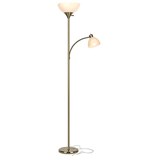 NNLX Modern Floor Lamp, LED Reading Floor Lamp, Dimmable Standing Pole Office Lamp -For Living Room Tall Lights Bedroom Lamps (Gold)