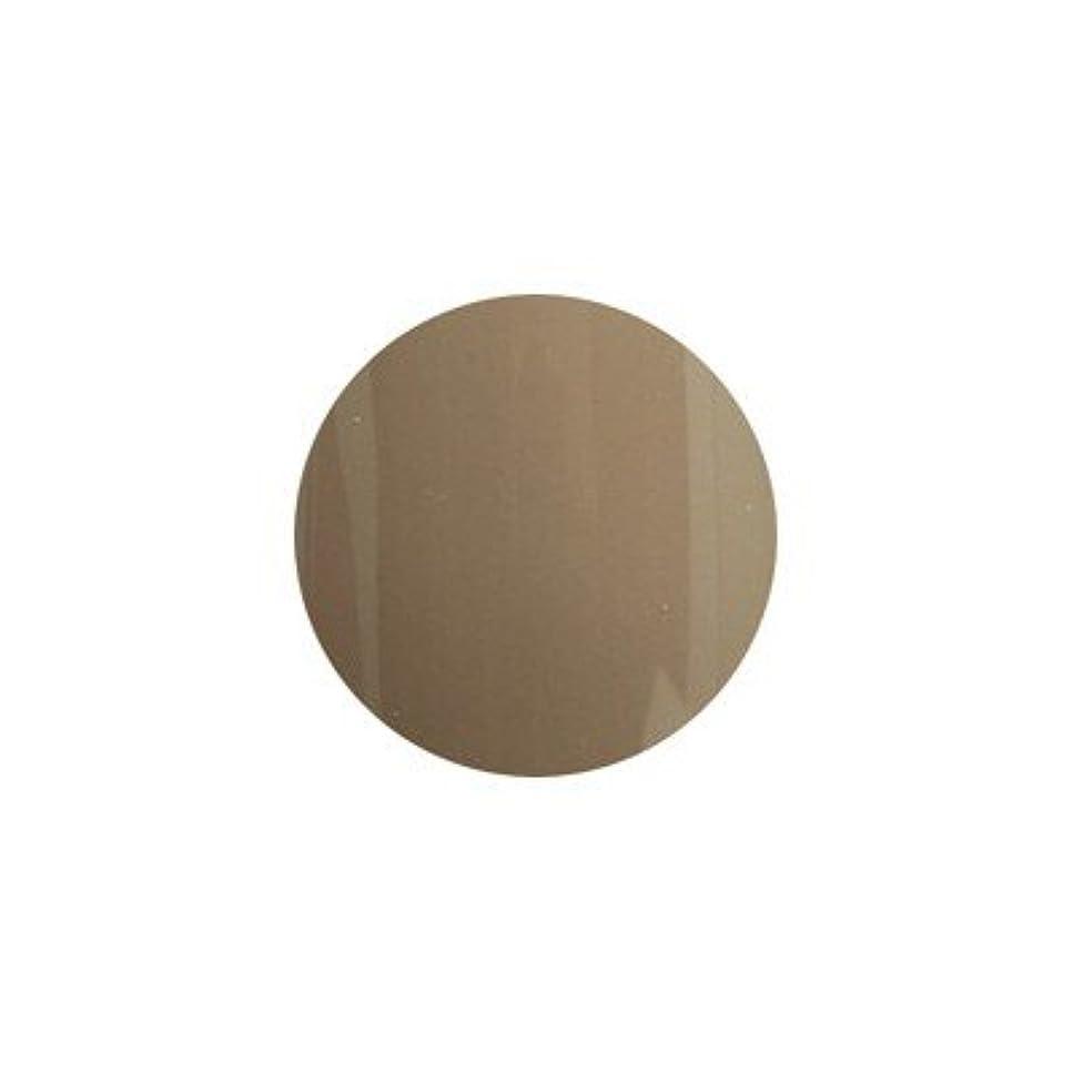 モッキンバードアセンブリ奇妙なプリジェル ベーシックカラージェル 3g PG-260 ダスティーブラウン