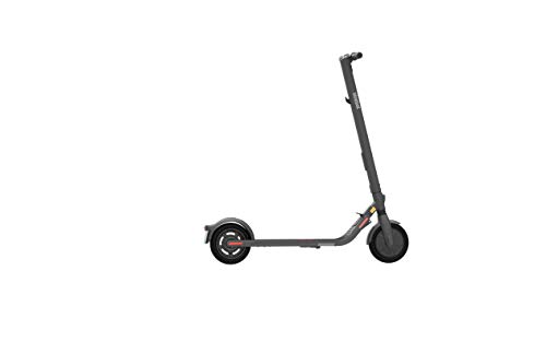 Ninebot KickScooter E25D Powered by Segway mit Straßenzulassung