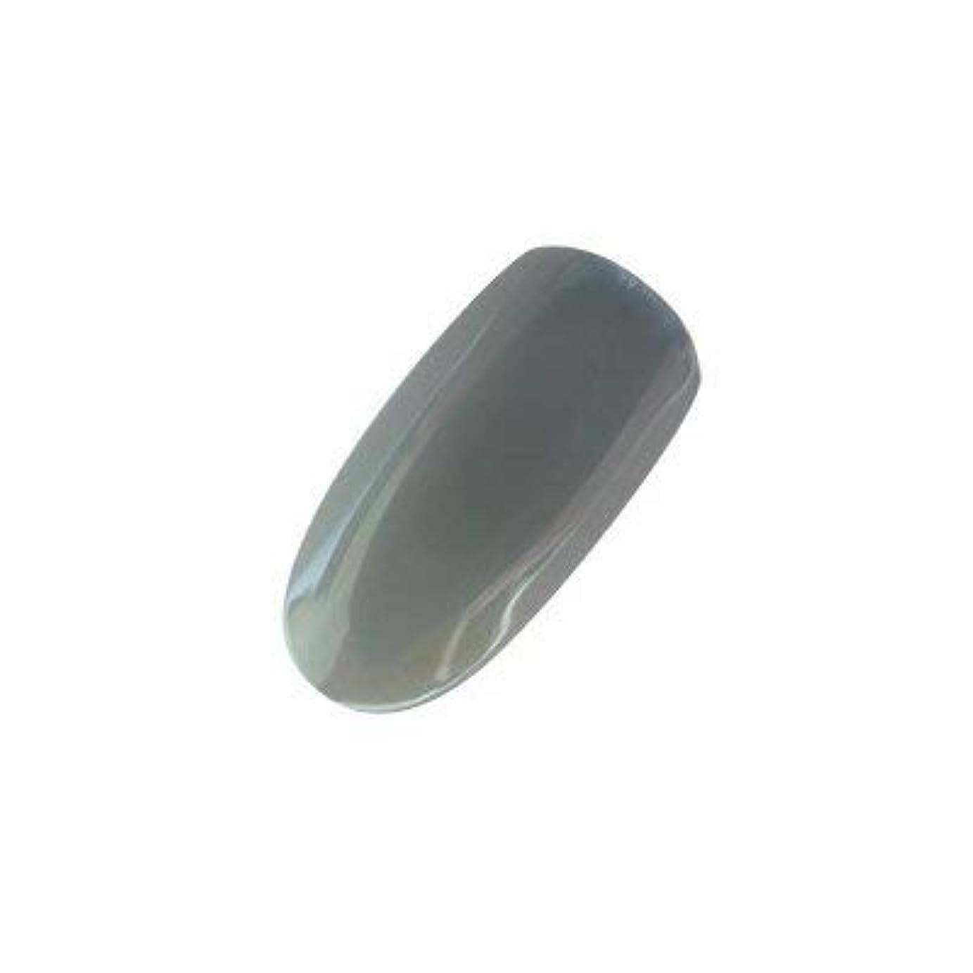 ウィンク商業の溶接アイニティ カラージェル 009 テクノグレー 5g