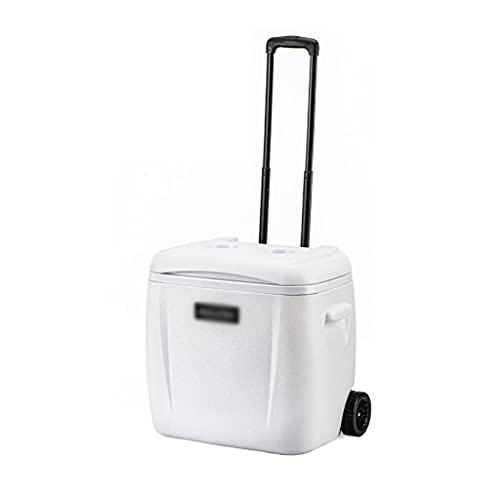 SHENXINCI Nevera Portatil y Rigida Performance Cooler,Enfriador de Incubadora Portátil con Tirador y Asa,como en Casa/Sin Conductor/Comercial,13L, 33L, 28L, 38L