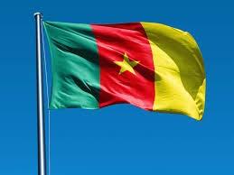 My Planet Online - Bandiera del Camerun Grande, 150 x 90 cm, con Occhielli in Ottone, per Tifosi di Tifosi di Eventi Sportivi, Decorazione per Feste