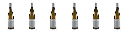 Wein- und Sektgut Weber Sauvignon Blanc SE 2019 Trocken (6 x 0.75 l)