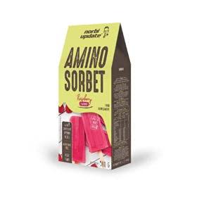 UPDATE AMINO SORBET RASPBERRY 500g