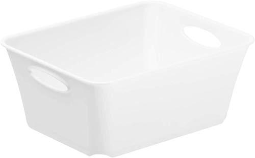 Rotho Living kleine Aufbewahrungsbox 1l, Kunststoff (PP) BPA-frei, weiss, C6/2,5l (18,6 x 15,1 x 6,0 cm)