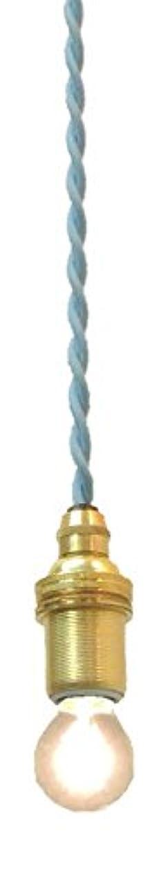 暴徒困難同等のコンコルディア照明 ペンダントライト 灯具のみ コード吊り シーリングカバー有り NIL-RJ5 (水色, 200 センチメートル)