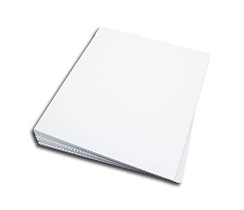 LP Schallplatten Registerwände weiß Protected (25 Stück)