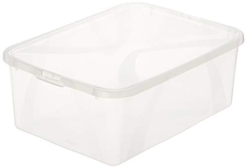 AmazonBasics - Set di 3 contenitori portaoggetti, 3 x 10 l