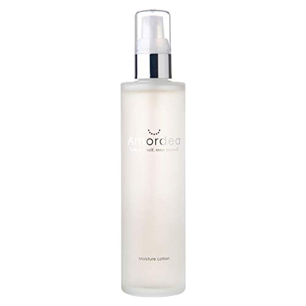無許可不承認実行可能モイスチュアローション 120mL 化粧水 導入美容液