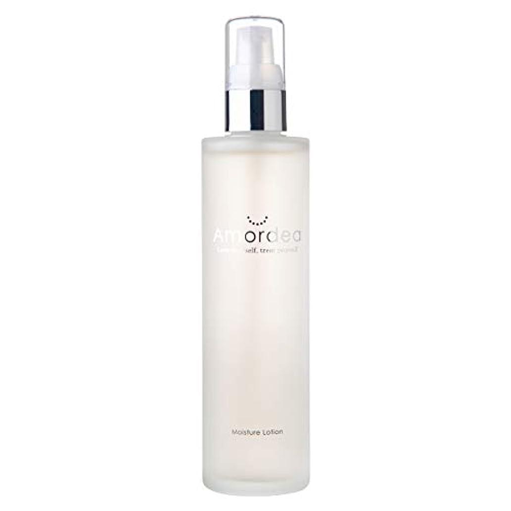 追い越すタイト一過性モイスチュアローション 120mL 化粧水 導入美容液
