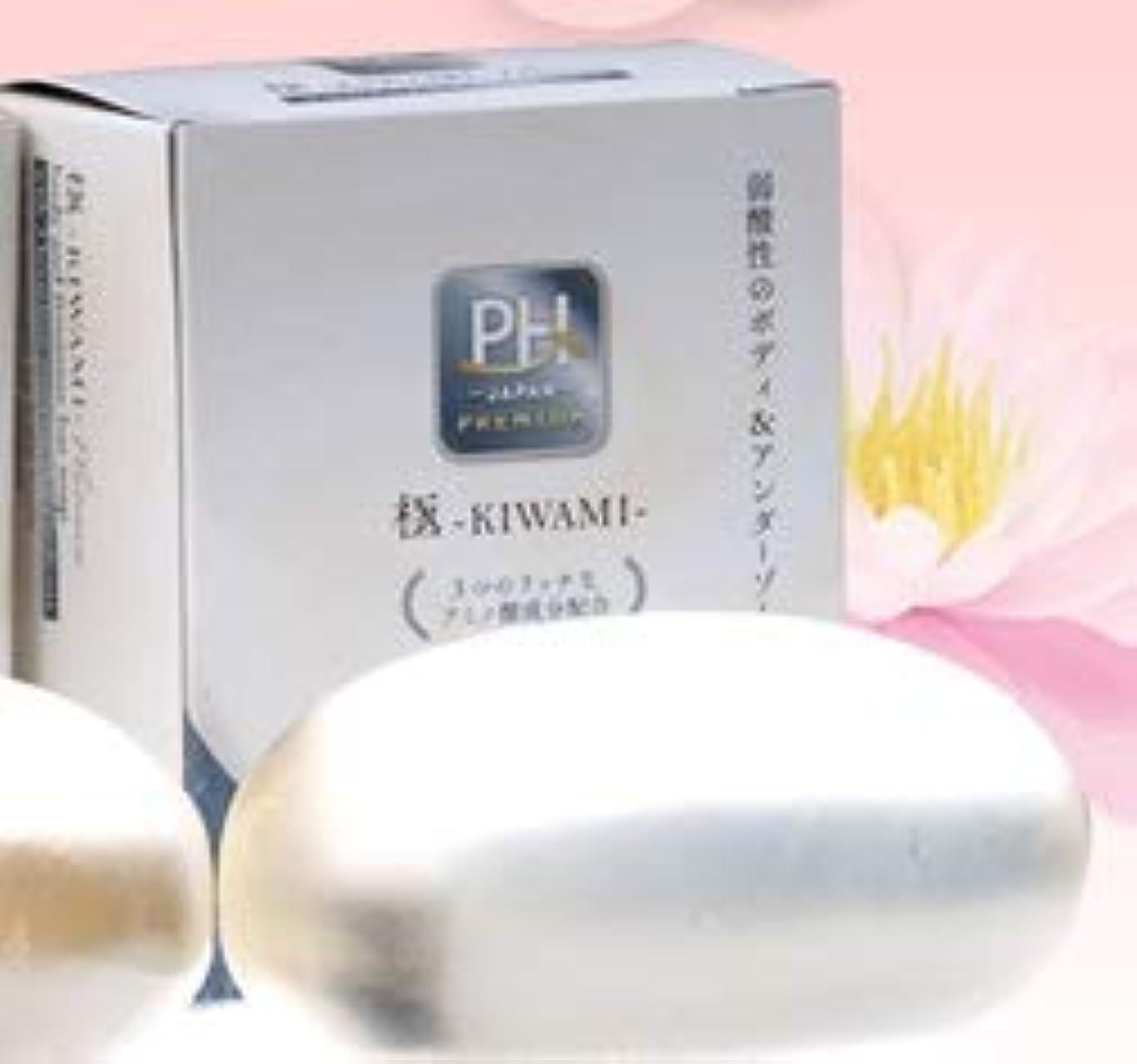 フィヨルドリーガン見習い弱酸性アミノ酸 透明固形石けん 極-KIWAMI-プラチナ