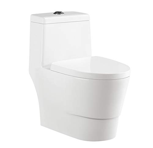 One Piece Toilet 12' Rough-in Elongated Bowl Low-Consumption 0.8/1.28 GPF, Dual Flush Elongated Toliet with Soft Closing Seat, Comfort Height (TL04)