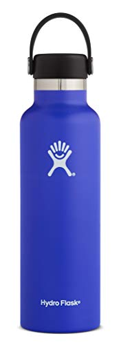Hydro Flask Standard Mouth Water Bottle, Flex Cap - 21 oz, Blueberry