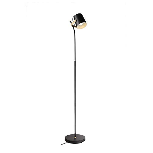 EIU Vloerlamp veren lampenkap creatieve romantische woonkamer slaapkamer studie verticale lamp M03/24