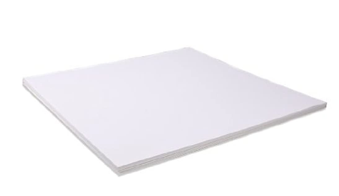 Bazzill Basics 12 by 12-Inch 25-Sheet Cardstock, White