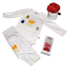 DE BAMBINI Oster Geschenkset Baby für Mädchen oder Junge, Größe 44-92, Bestehend aus Body, Hose, 2 Schnuller und Grace Flowerbox (50-56)