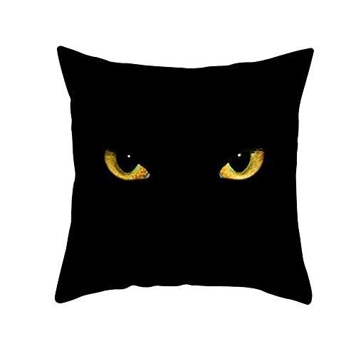 Funda de Cojín Decorativos Funda de Almohada Gato negro Cuadrado Terciopelo Suave Cojines Decoracion con Cremallera Invisible para Sofá Cama Decor Hogar Funda de Cojín M13030 Pillowcase+core,50x50cm