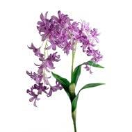CAL FUSTER - Flor Artificial Orquídea Color Lila