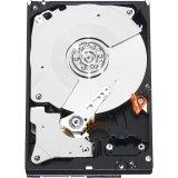Western Digital RE4 WD5003ABYX - Disco duro interno (500 GB, 20 unidades)
