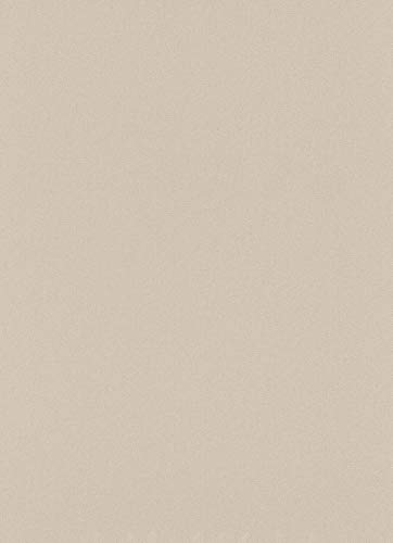 Papel pintado de vinilo con textura de ladrillo gris ERISMANN 6703-10