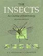 Insects - An Outline of Entomology (2nd, 00) by Gullan, Professor P J - Cranston, Peter [Paperback (2000)]