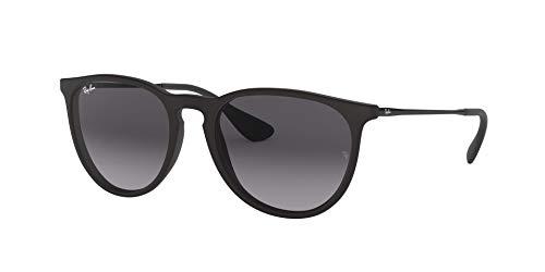 Fashion Shopping Ray-Ban RB4171 Erika Sunglasses