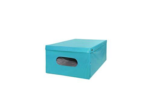 WELKHOME Scatola Monocolore in Cartone con Finestra PVC Portaoggetti Biancheria Armadio 50x40x25 cm
