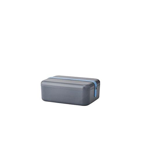 RIG-TIG by Stelton Keep-IT COOL Frühstücksdose - grau mit blau/grau/rosa Silikonband