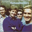 Songtexte von The Saw Doctors - Sing a Powerful Song