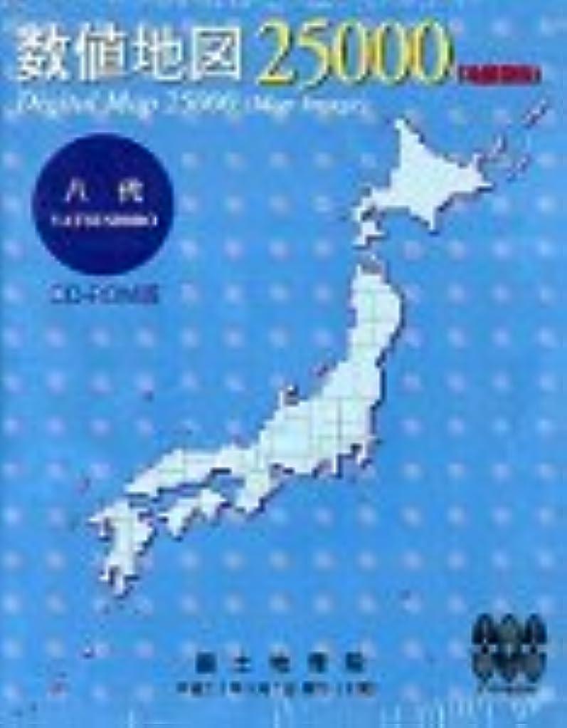 四分円崩壊篭数値地図 25000 (地図画像) 八代