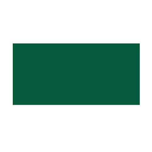 LICHUAN Pizarra magnética para niños y niñas (negro, verde)
