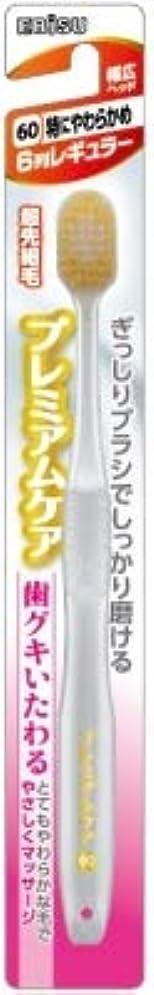 振る受取人閉じる【まとめ買い】プレミアムケア歯グキいたわる6列レギュラー ×3個