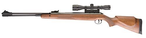 Diana RWS Model 460 Magnum Hardwood Stock Pellet Gun Air Rifle, .22 Caliber, Gun with 4x32mm Scope