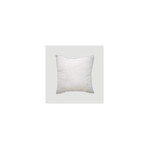 PimpamTex – Relleno de Cojín de Fibra Hueca Siliconada, 1 ud, Suave y Esponjoso, Combinable con Cualquier Funda de Cojín, Color Blanco – (1, 65 x 65 cm)