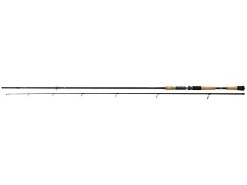 Daiwa PROREX Spin Spinnrute 2.40m 10-30g