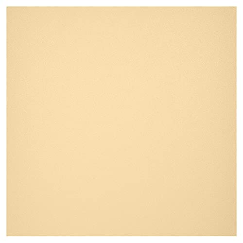 Coavas Privacy Window Film Sun UV Blocking Frosted Static Clings Non Adhesive Opaque Vinyl Decorative Glass Door Stickers Heat Control Coverings for Bathroom(35.4 x 78.7 Inch, Champagne Frosted)