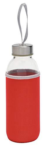 TOPICO 56-0304232 TAKE WELL - Botella isotérmica (cristal/acero inoxidable)