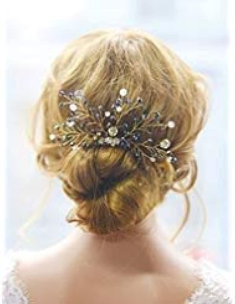 農場怖い拡張FXmimior Bridal Black Vintage Wedding Party Crystal Rhinestone Vintage Hair Comb Hair Accessories [並行輸入品]