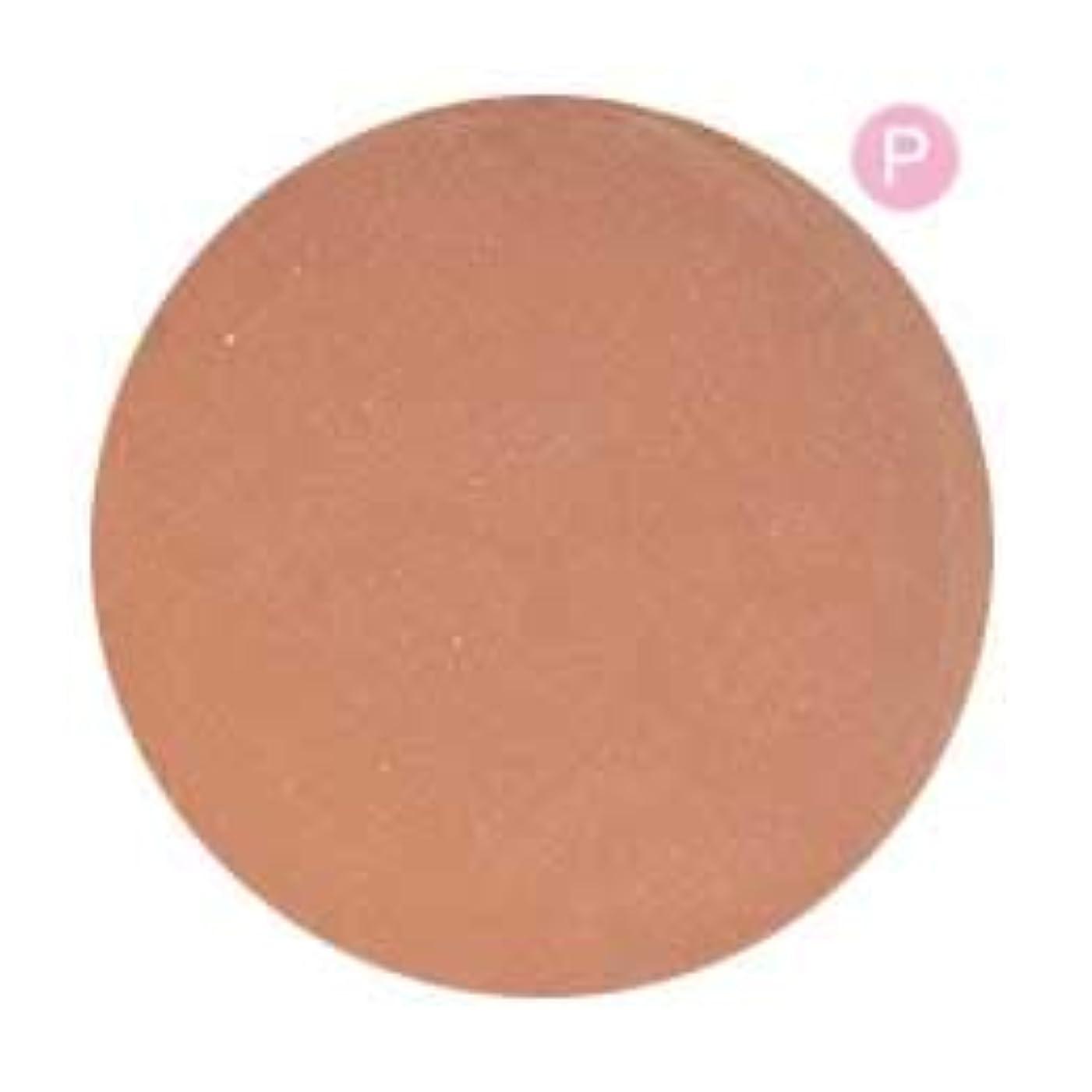 大胆な独創的不愉快PRE GEL カラージェル カラーEX ジンジャーパール-P 3g PG-CE570 UV/LED対応