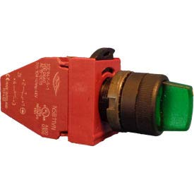 Springer Minneapolis Mall Controls OFFicial N5XSLZ0V11L 2-Position Illuminated Selector w
