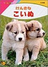 げんきな こいぬ (フォト絵本)