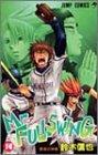 Mr.FULLSWING (14) (ジャンプ・コミックス)
