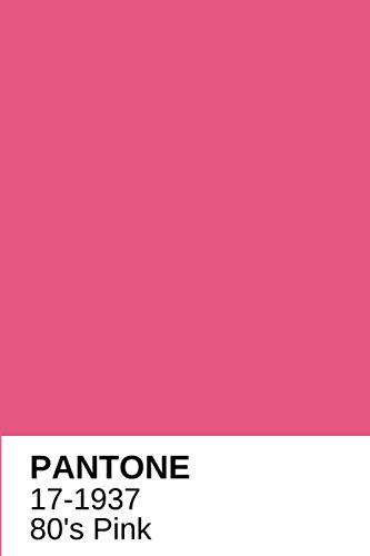 """80 s Pink Neon Pantone Color Notebook Journal or Notepad Diary: Wide ruled lined 6"""" x 9"""" and 120 white pages"""