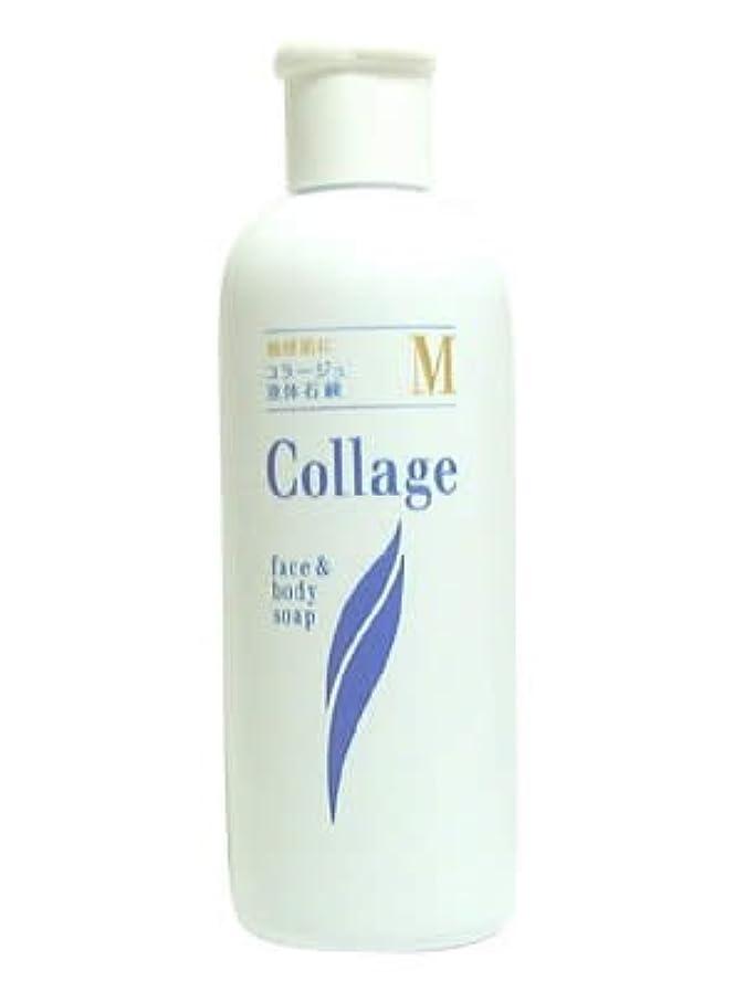 インシュレータ論理ストロークコラージュ M液体石鹸 200mL