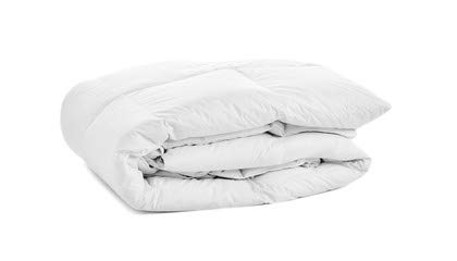 OrganicTextiles Bamboo Comforter with Organic Cotton Cover (Queen - White)...