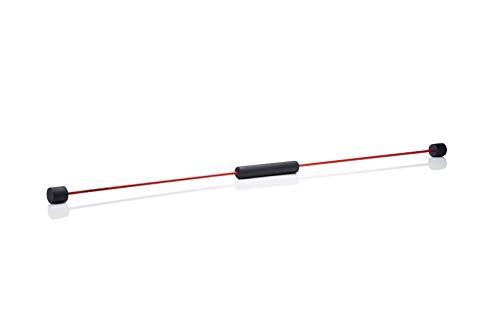 FLEXI-BAR® Standard Rot Rücken-Set 1, hochbelastbarer Schwingstab von Flexi-Sports mit Tasche Rot, Einführungs-DVD, DVD Rückenfit und Trainingsplan, Schwungstab, Schwingstick