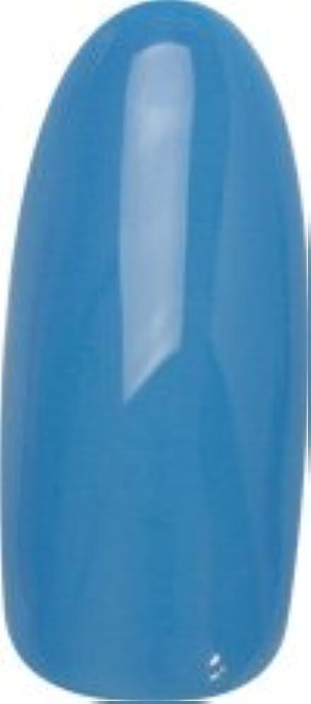 月肌寒い妖精★para gel(パラジェル) デザイナーズカラージェル 4g<BR>DP02 カリビアンブルー