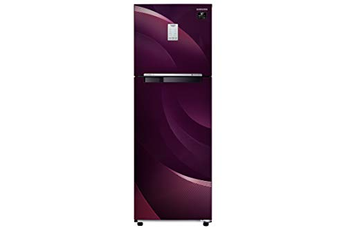 Samsung 255 L 3 Star Frost-Free Double Door Refrigerator (RT30T37534R/HL, Rythmic Twirl Plum)